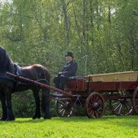 Begrafenisverzorging van Asselt - koetsen 001