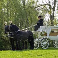 Begrafenisverzorging van Asselt - koetsen 002