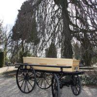 Begrafenisverzorging van Asselt - koetsen 004